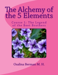 The Alchemy of the 5 Elements
