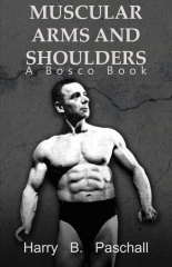 Muscular Arms and Shoulders