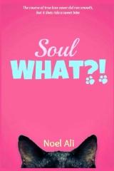 Soul What?!