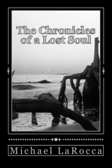 The Chronicles of a Lost Soul