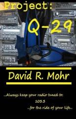 Project: Q-29