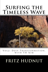 Surfing the Timeless Wave (Vol2)