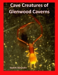 Cave Creatures of Glenwood Caverns