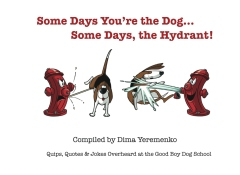 Some Days You're the Dog... Some Days, the Hydrant!