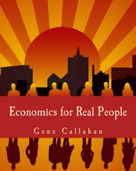 Economics for Real People (Large Print Edition)