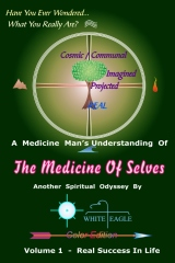 The Medicine of Selves - Vol. 1