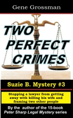 Two Perfect Crimes: Suzi B. Mystery #3