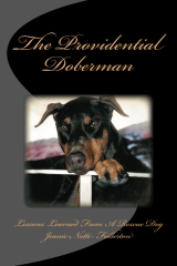 The Providential Doberman