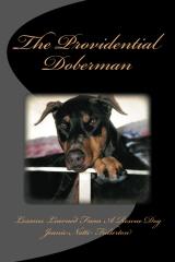 The Providential Doberman