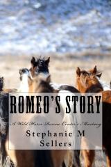 Romeo's Story