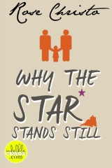 Why the Star Stands Still