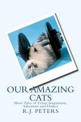 Our Amazing Cats