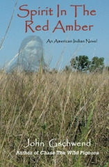 Spirit In The Red Amber: A novel of an American Indian