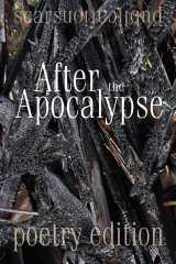 After the Apocalypse (poetry edition)