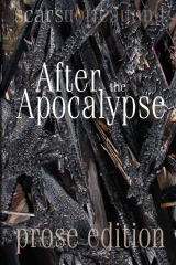 After the Apocalypse (prose edition)