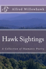 Hawk Sightings