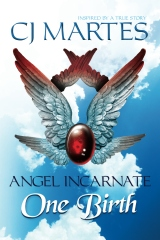 Angel Incarnate: One Birth