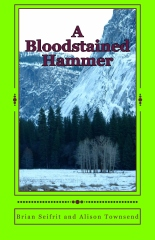 A Bloodstained Hammer