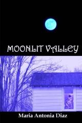 Moonlit Valley