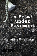 a Petal Under Pavement
