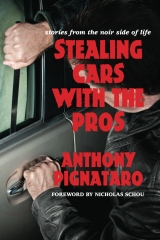 Stealing Cars With The Pros