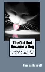 The Cat that Became a Dog