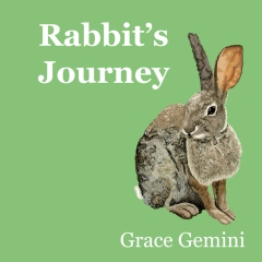 Rabbit's Journey