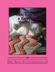 Daily Yoga For a Happy and Healthy Cat
