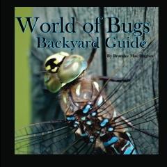 World of Bugs 2