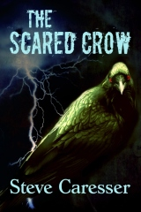 The Scared Crow