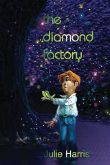 The Diamond Factory
