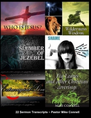 Who Is Jesus ~ Wilderness Wisdom ~ Slumber of Jezebel ~ Everlasting Love ~ Fig Leaves & Other Christian Coverings ~ Unashamed
