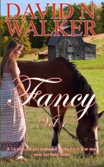 Fancy Vol 1