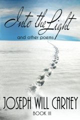 into the light poetry book