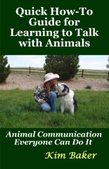 Quick How-To Guide for Learning to Talk with Animals