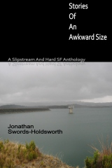 Stories Of An Awkward Size