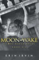 Moon-Wake