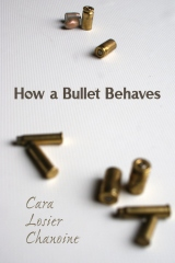 How a Bullet Behaves