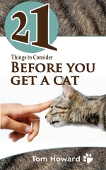21 Things to Consider Before You Get a Cat