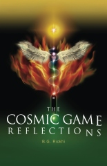 The Cosmic Game: Reflections