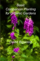Basic Companion Planting for Organic Gardens