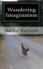 Wandering Imagination