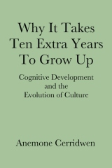 Why It Takes Ten Extra Years To Grow Up