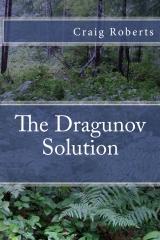 The Dragunov Solution