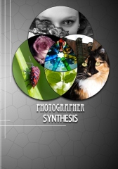 Photographer Synthesis