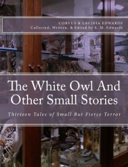 The White Owl And Other Small Stories