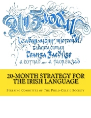20-Month Strategy for the Irish Language