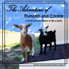 The Adventures of Pumpkin and Cookie