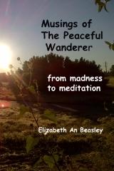 Musings of The Peaceful Wanderer
