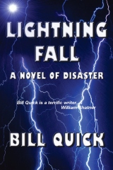 Lightning Fall: A Novel of Disaster